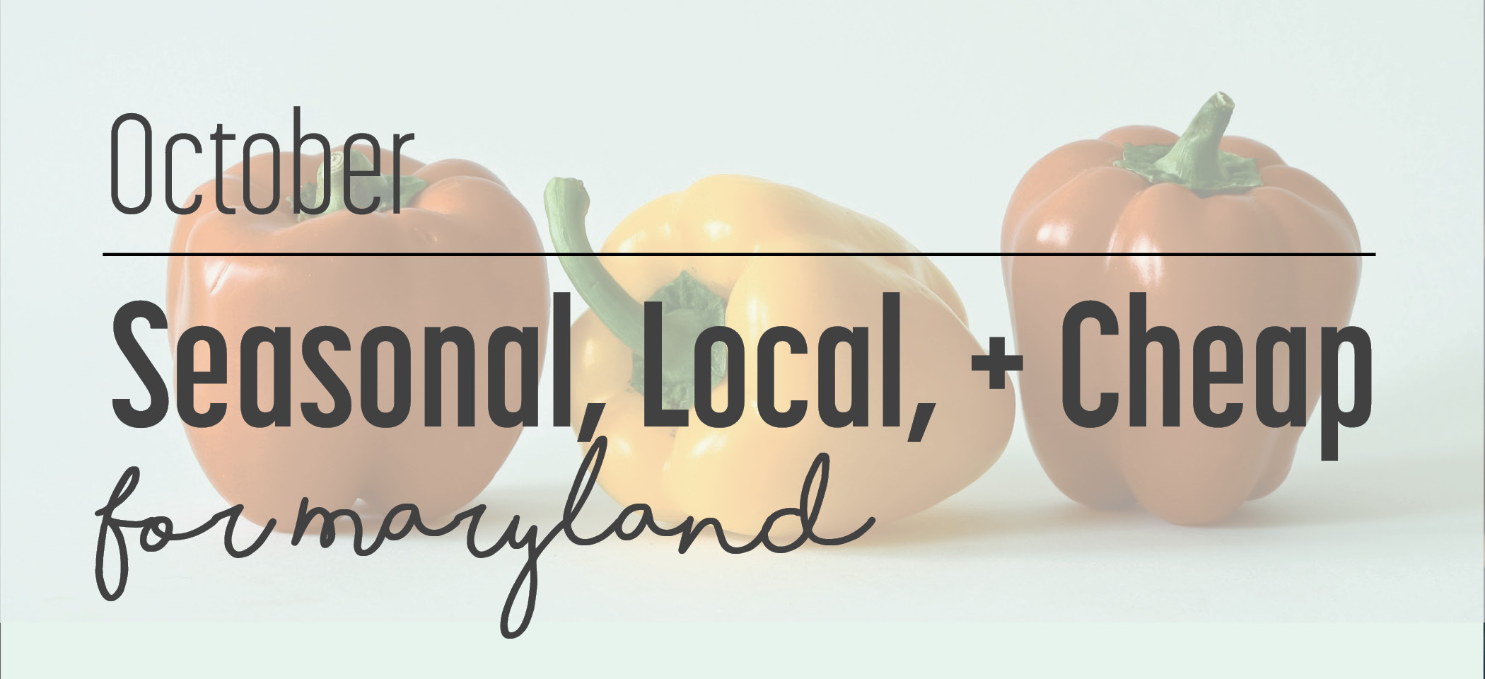Seasonal, Local, Cheap: October