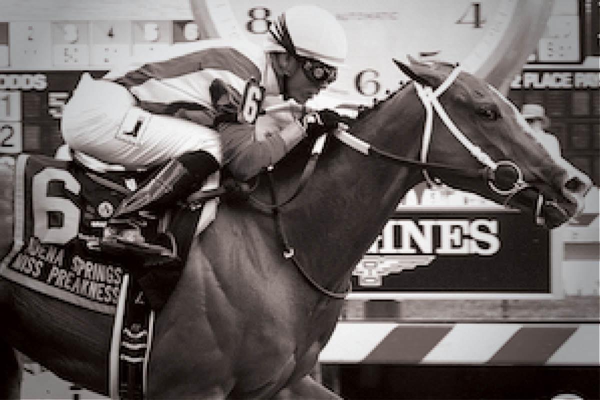 On Animal Exploitation | Horse Racing