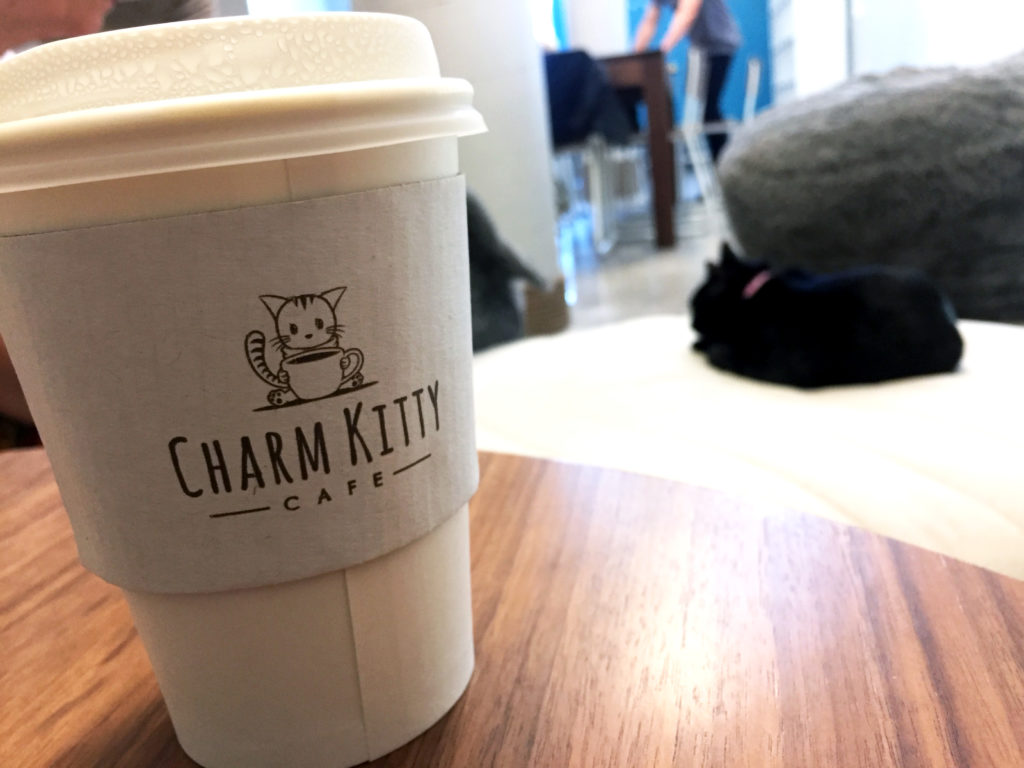 Charm Kitty Cafe with Frankie the Cat in the background