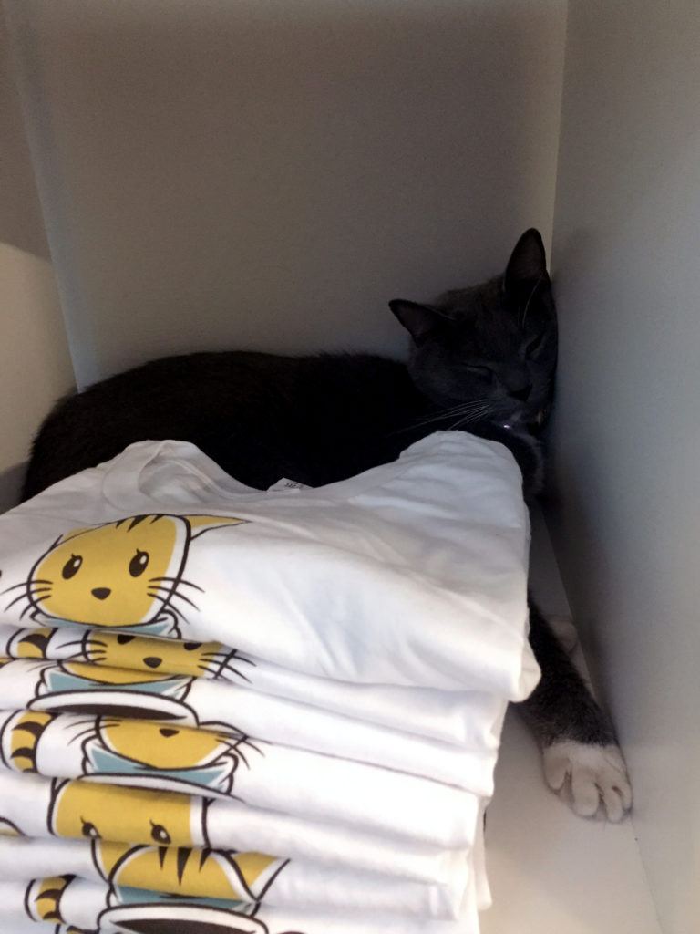 Paris chilling in a T-Shirt Cubby at Charm Kitty Cafe